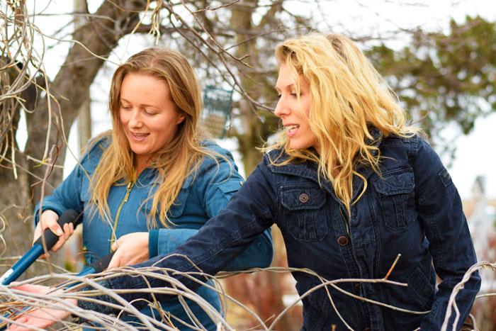 The-Prairie-Chick-and-Native-Gypsies-Makie-and-Jackie-cutting-grapevine