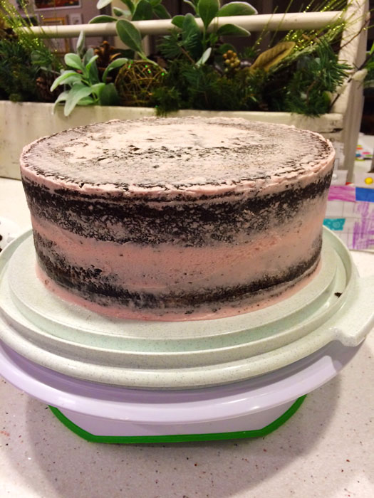 The-Prairie-Chick-chocolate-Naked-Cake-Test